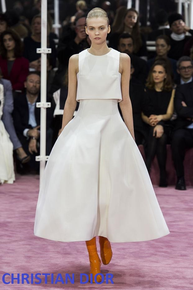 christian-dior-haute-couture-spring-2015-pfw53