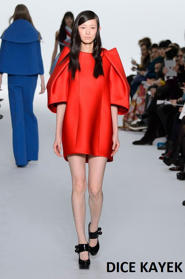 dice-kayek-haute-couture-spring-2015-pfw13
