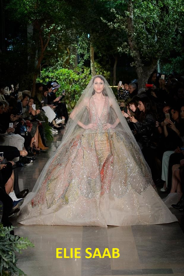 elie-saab-haute-couture-spring-2015-pfw56